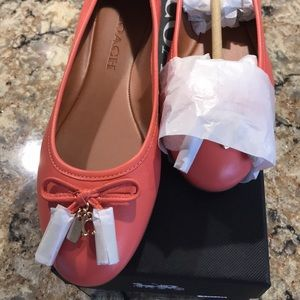 Authentic Coach Coral Flats New Women's Size 8
